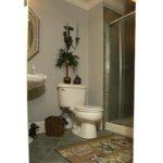 bathroom-deming-basement