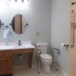 white-shower-toilet